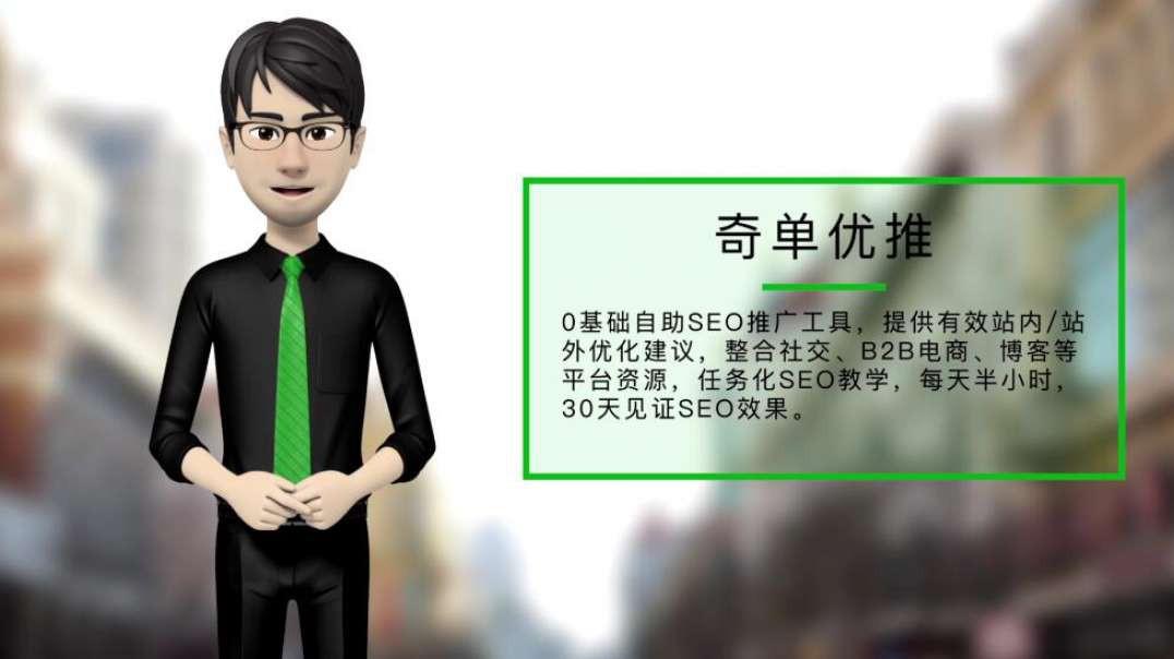 奇单优推--seo自助推广工具.mp4